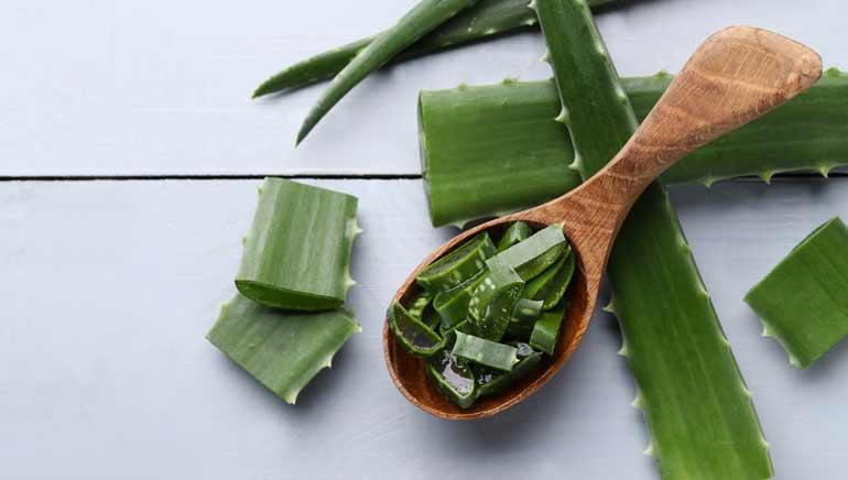 Aloe vera para combatir el acné