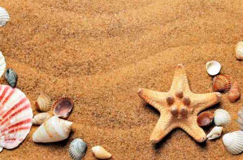 Consejos naturales para buena salud en verano