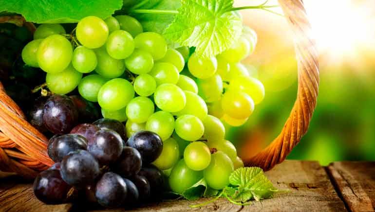 Uvas: beneficios para la salud