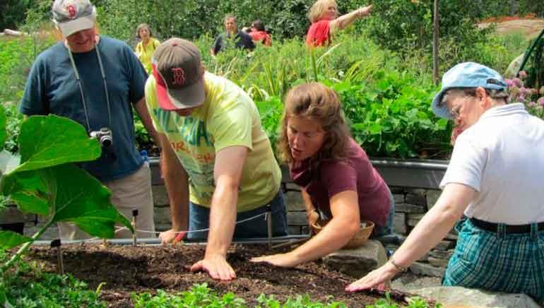Objetivos de la Horticultura Terapéutica