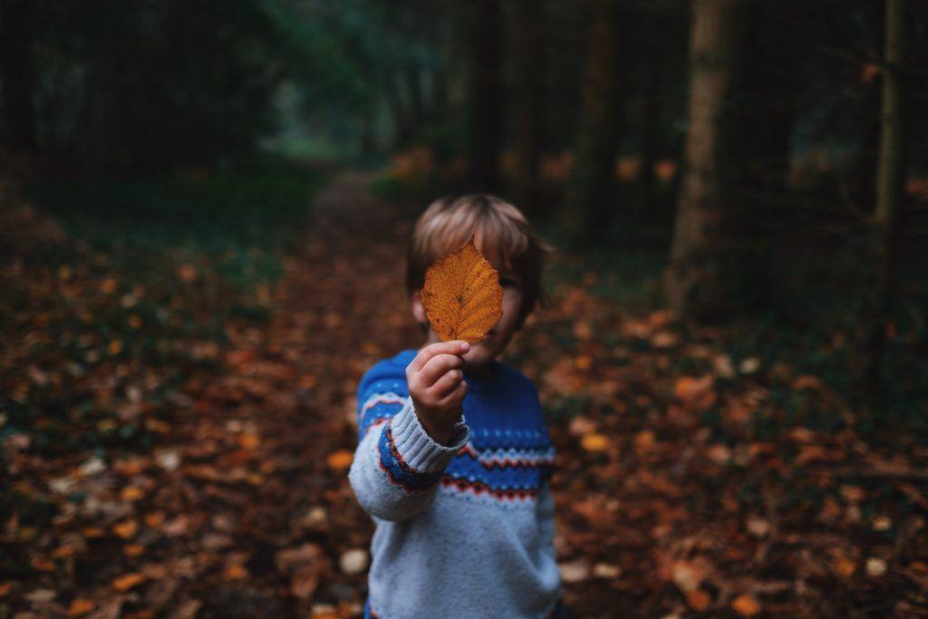 Last Child in the Woods de Richard Louv