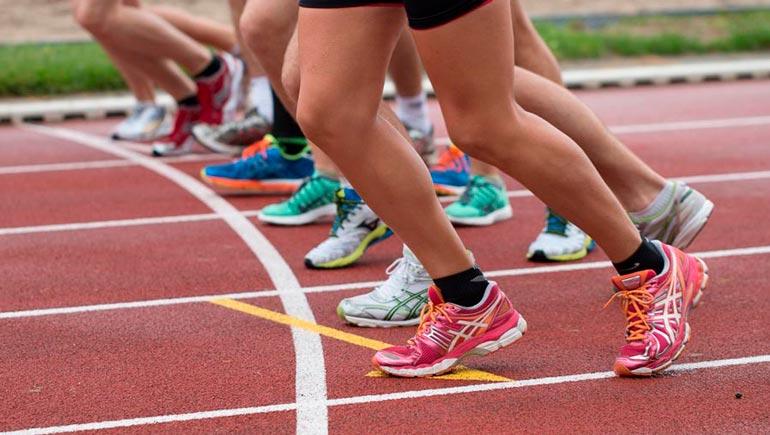 Beneficios de los probióticos en los deportistas